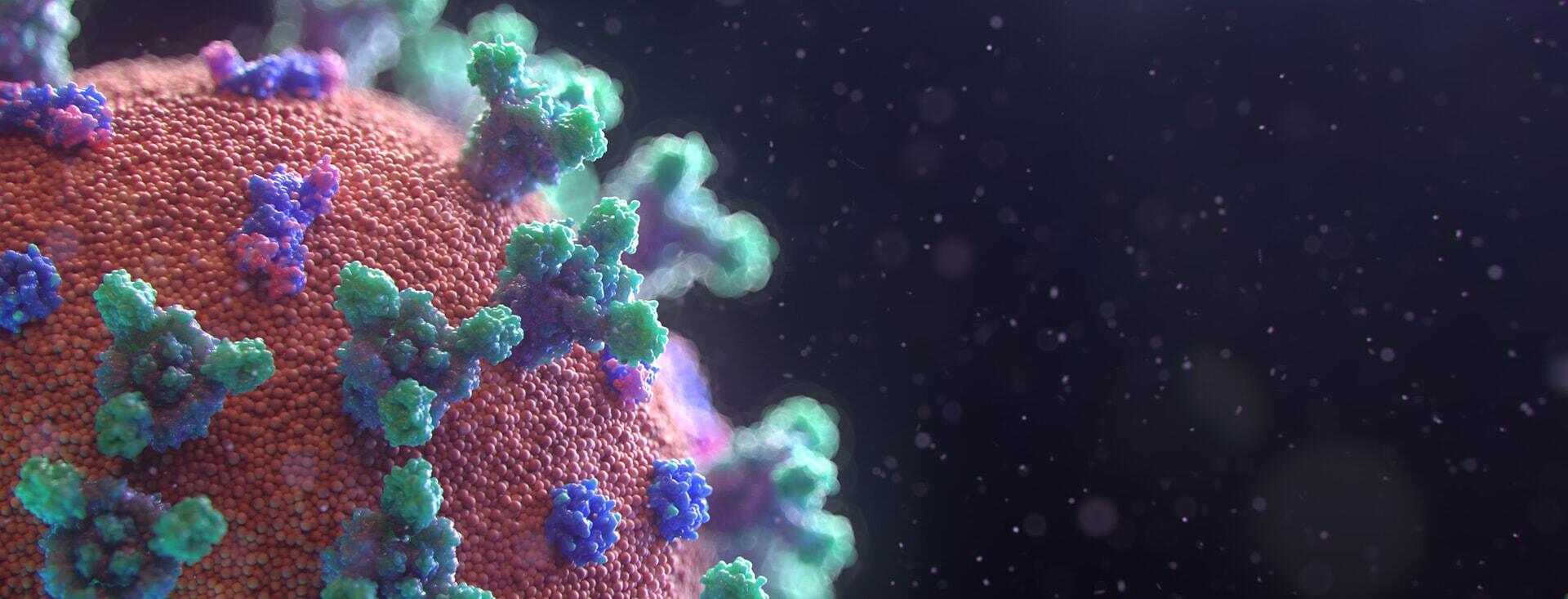 coronavirus visualisation