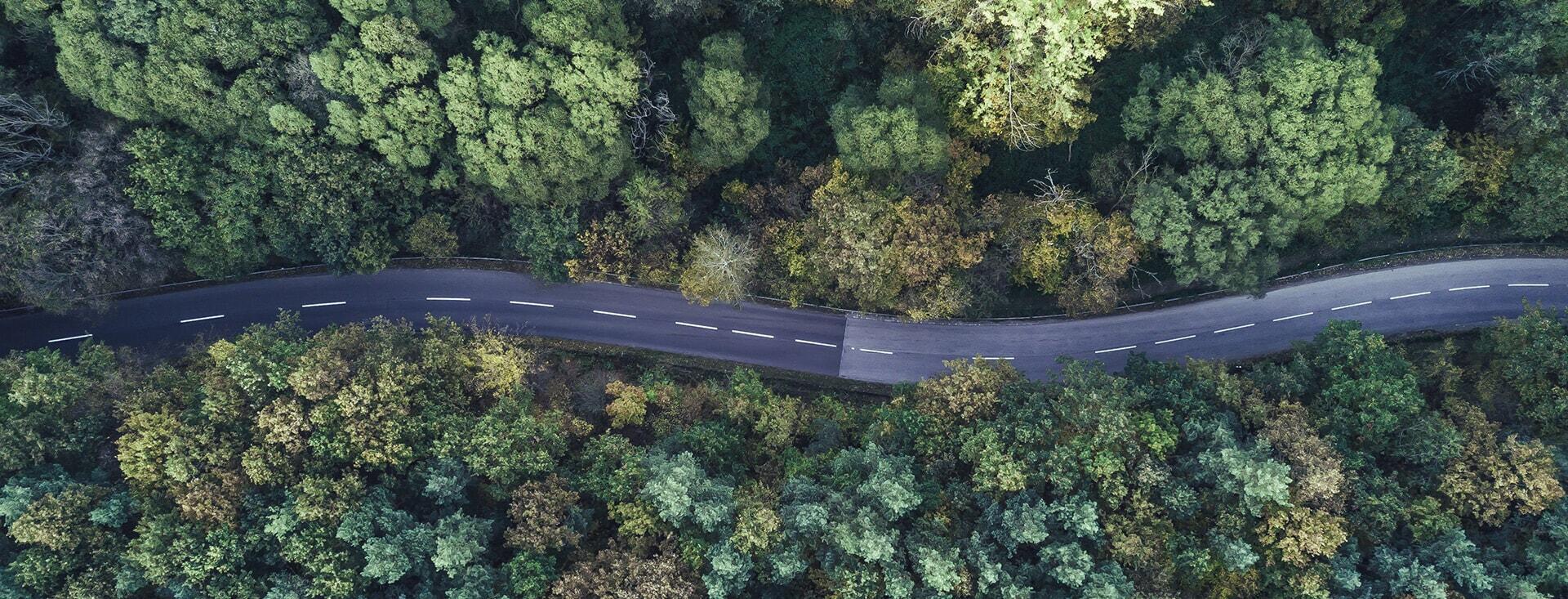 Top down view of winding road through bush