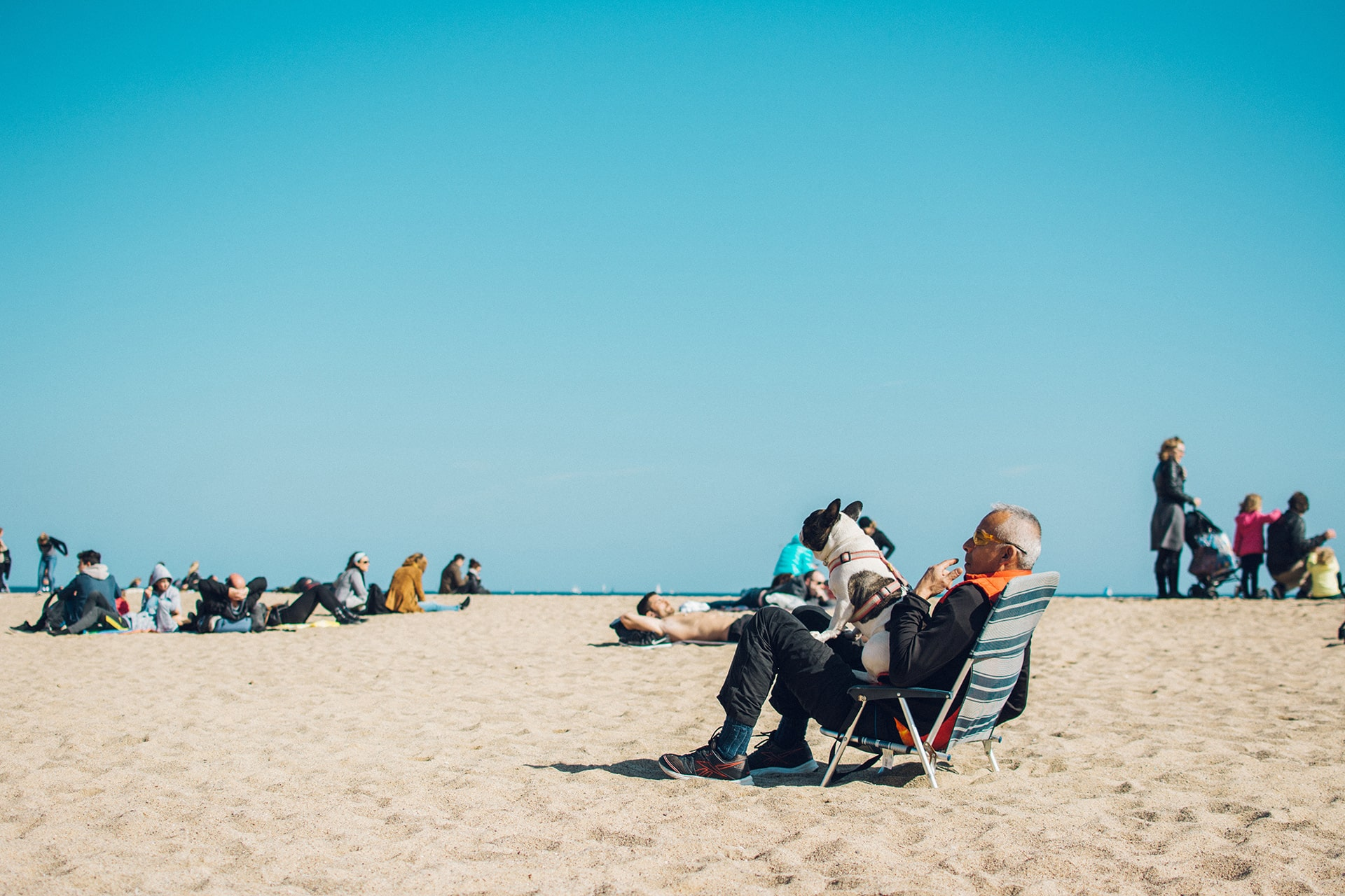 man and his dog sitting on a beach
